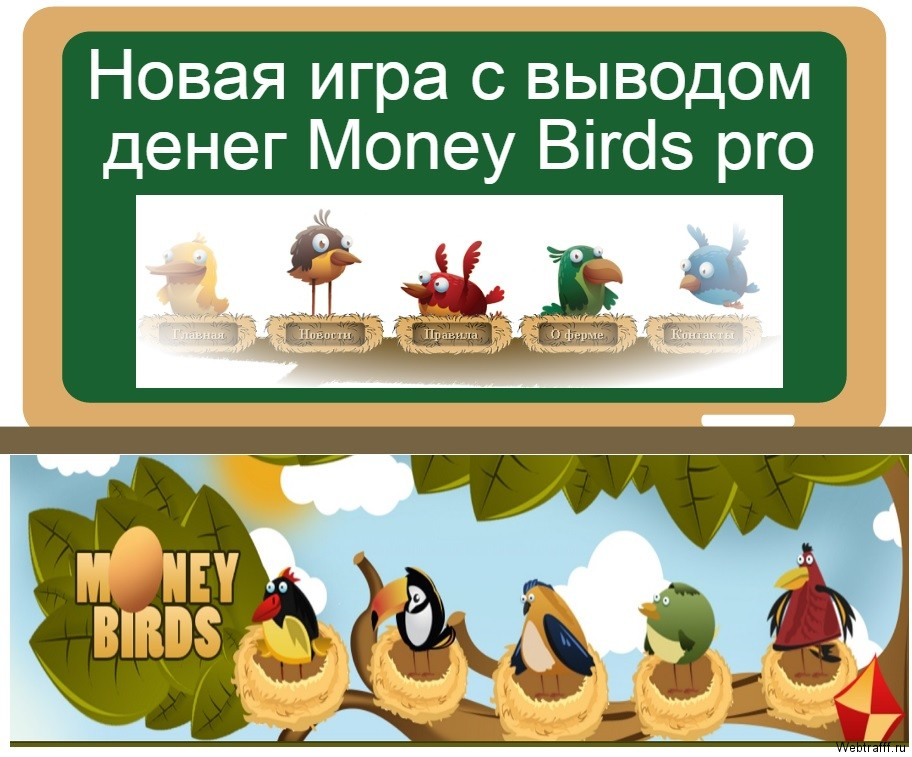 Money Birds pro
