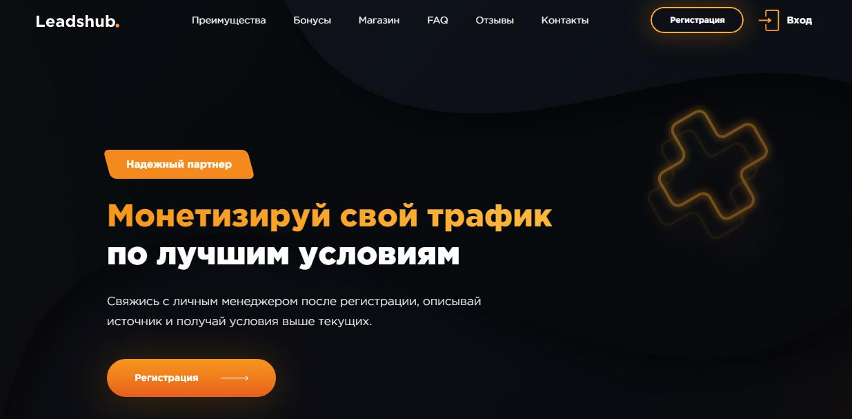Leadshub монетизация